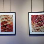 Photo Exhibit Monaco Javier Gomez-5