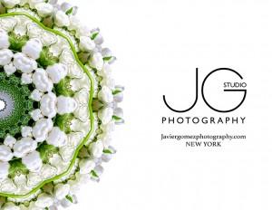 Javier Gomez Photographer Media Kit New York Panama Abstract Photography