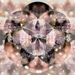 Sacred-Geometry-07